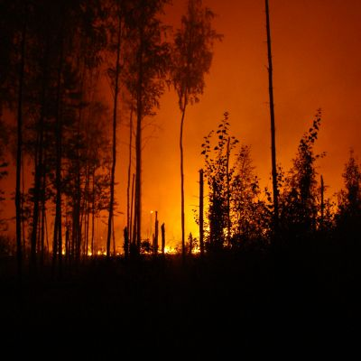 Wildfire Lawsuits Lawyer Roseville CA - Gingery Hammer Schneiderman LLP